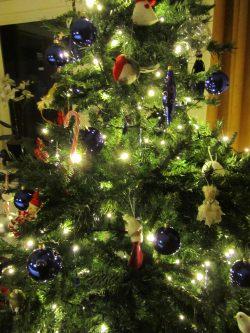 De perfecte kerstboom