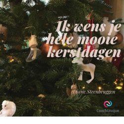 Mooie kerstdagen!